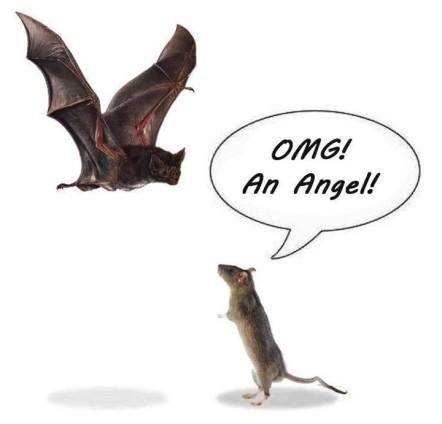 angel_bat